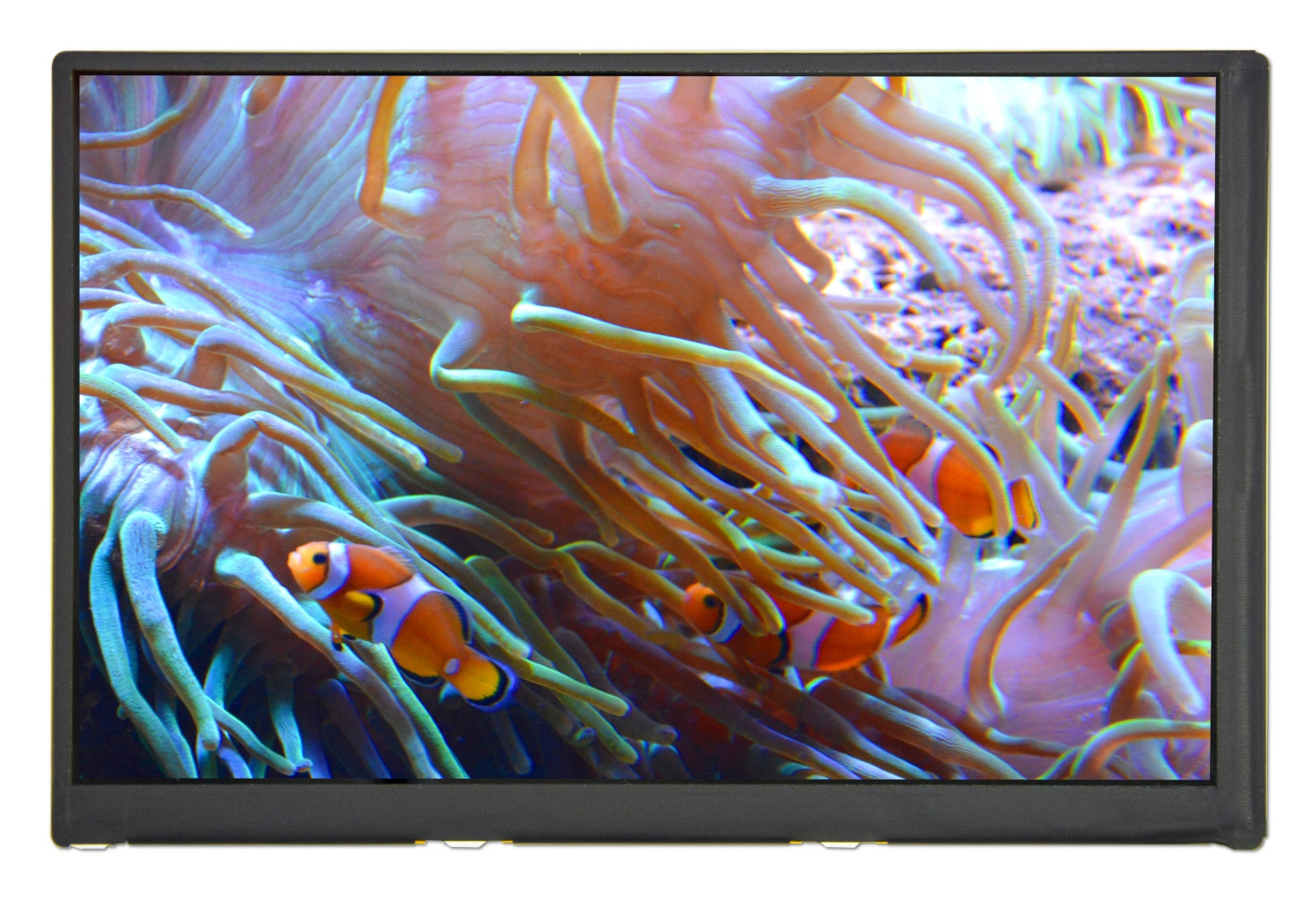 DLF0702-TNN-A01 - LCD-TFT display from Litemax Co. (7 inches, 1280x800, no controller, LED inverter)